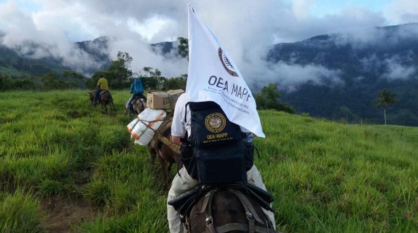 OEA advierte por reclutamiento de menores en Colombia
