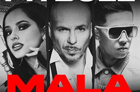 08. MALA – PITBULL ft. BECKY G & DE LA GHETTO (RMX)